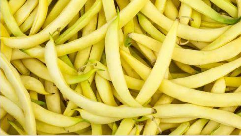 fasolka szparagowa żółta(500g)