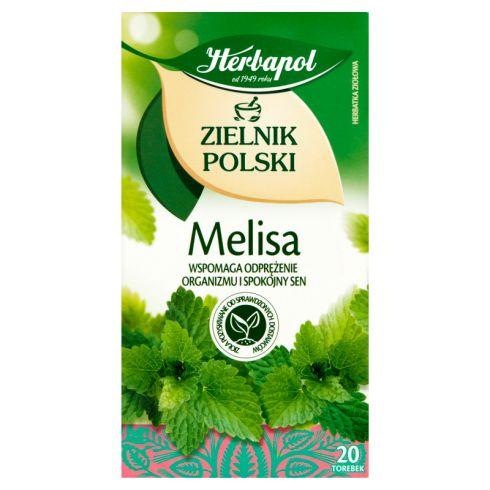 Herbapol Zielnik Polski Herbatka ziołowa melisa 40 g