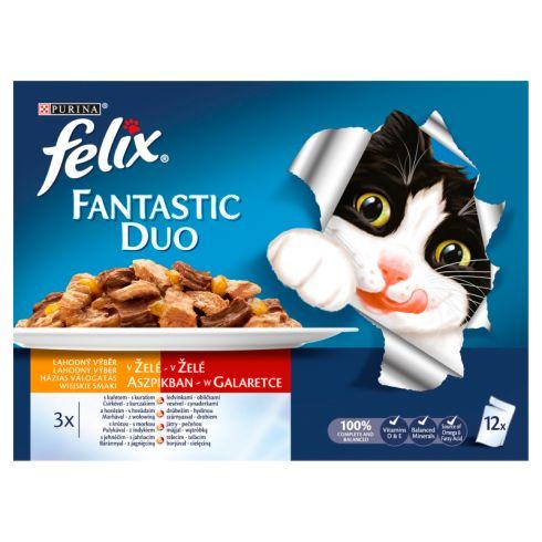 Felix Fantastic Duo Karma dla kotów wiejskie smaki w galaretce 1200g