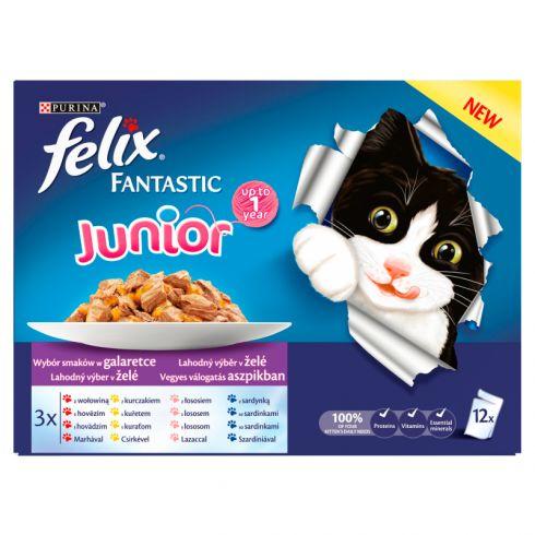 Felix Fantastic Junior Karma dla kociąt wybór smaków w galaretce 1200 g (12 x 100 g)