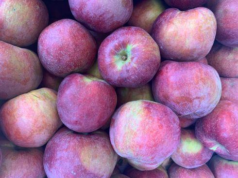 jabłka malinówka